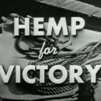 Mary Jane's Guide: Hemp Has FINALLY Arrived!