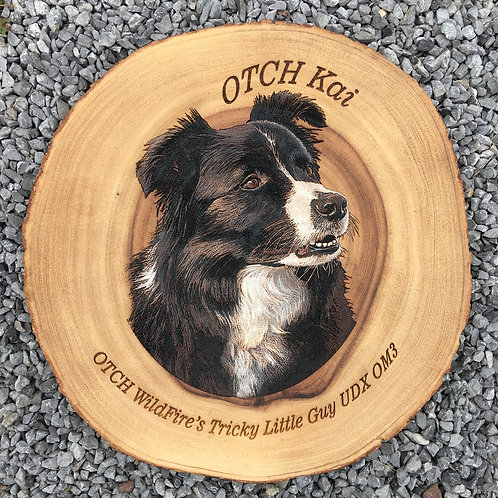 12 in. Diameter Bark Edge Acacia Round, Etched & Hand Colored Single Portrait.