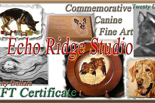 20.00 Gift Certificate!