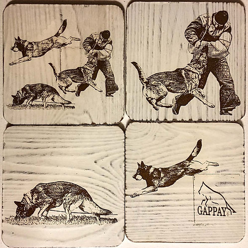 Set of 4  Distressed White Washed Coasters - 4x4 in. w Laser Etch Images.
