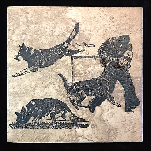6 X 6 in Italian Ceramic Tile  Etched with 3 Phases GSD only 1 avail.