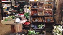 Plus de 40 variétés de légumes !