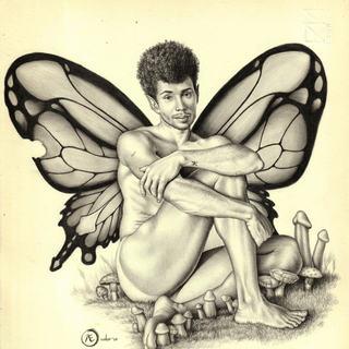 Boytterfly