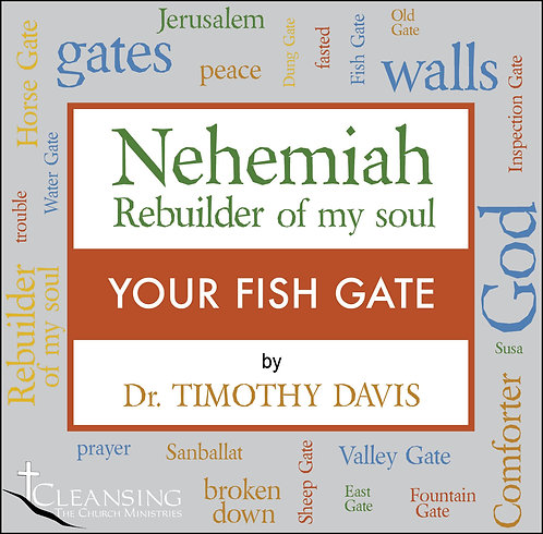 Nehemiah: Rebuilder of My Soul Part 2 - Your Fish Gate mp3