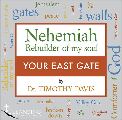 Nehemiah: Rebuilder of My Soul Part 9 - Your East Gate mp3