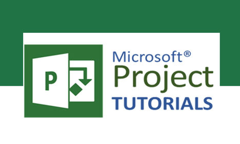 MS Project on dptutorials.com