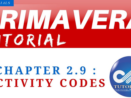 2.9 : Primavera Learning - Activity Codes