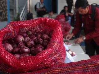 Beware | Bali's Onion Wars