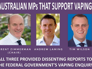 Australian Vaping Inquiry Chairman and Others Support Vaping (VIDEO)
