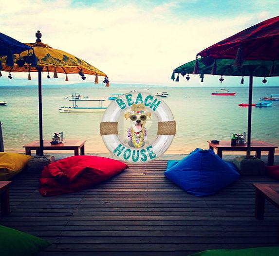 BEACH CAM .jpg