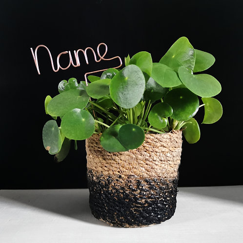 Personalised Name Plant Marker