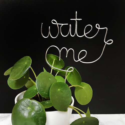Water Me Plant Topper