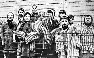 jewish-children-in-concentration-camp.jp