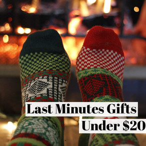 Sustainable Gifts Under $25