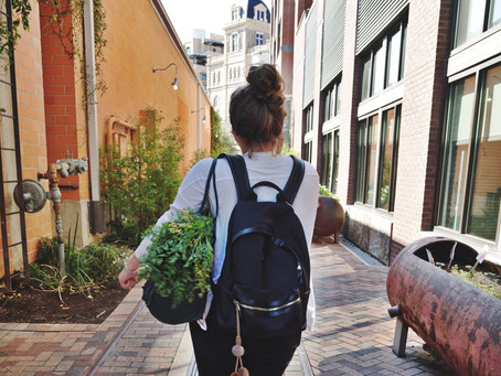 Sustainable Backpacks