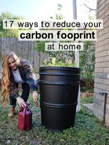 carbon footprint at home.jpg