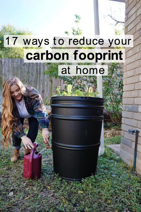 carbon footprint at home.jpg