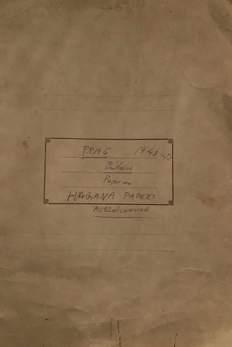 Zalman's Haganah Scrapbook