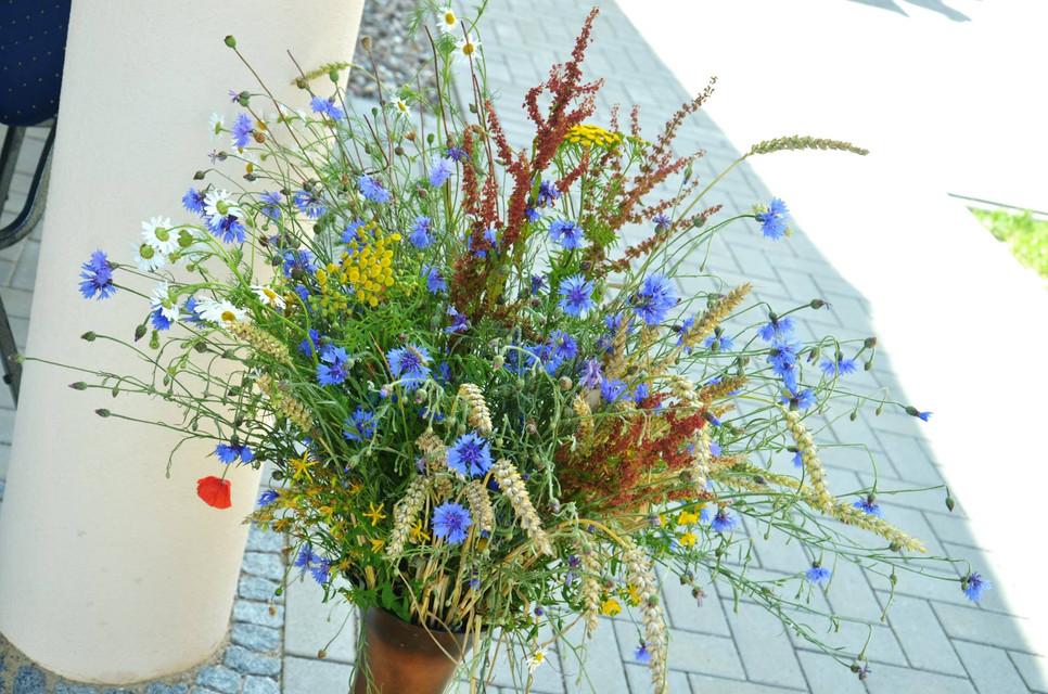 Blumen3.jpg