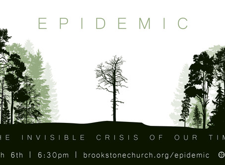 Epidemic: The Silent Crisis of our Day