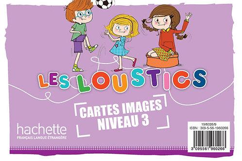 LES LOUSTICS-3/CARTES IMAGES EN COULEURS (X100)