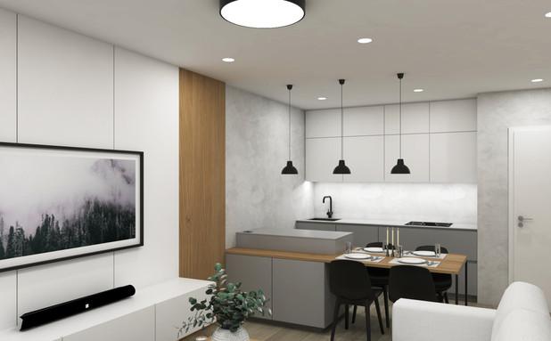Návrh interiéru bytu, Brno, Ponava
