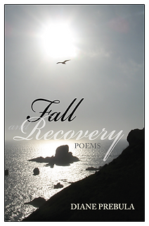Fall and Recovery, Diane Prebula