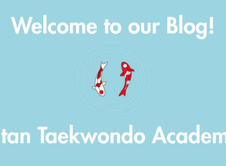 Welcome to Titan Taekwondo's new blog & website!