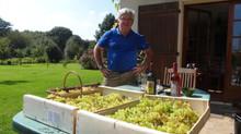 Table des matières : Leçons de choses sur les vignes, les vins et les viticultures