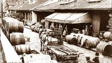 Les vignes, les vins et les viticultures