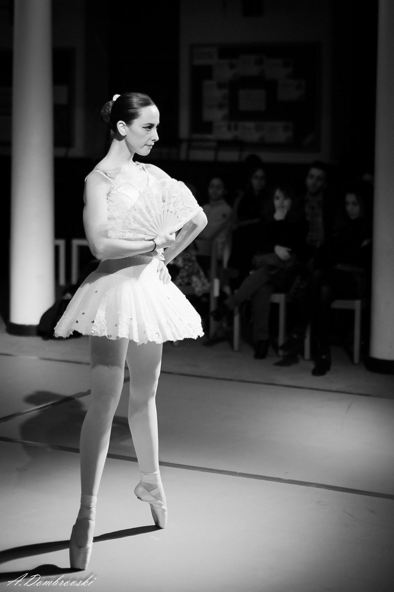 Don Quixote Ballet variation
