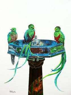 Quetzals