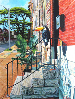 Untitled (Toucan)