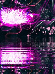 free-image-resizer-cropper (7).png