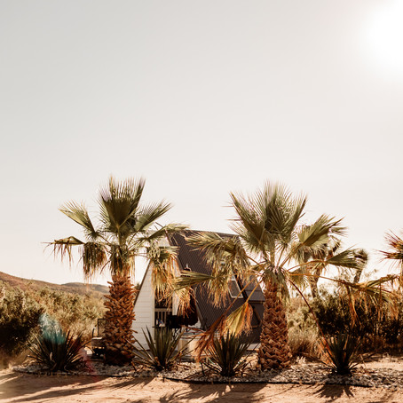 Kid Friendly Stays In Joshua Tree ( Joshua Tree Houses)