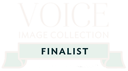 VOICE Finalist- BADGE- white.png