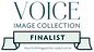 VOICE Finalist- BADGE- green.png