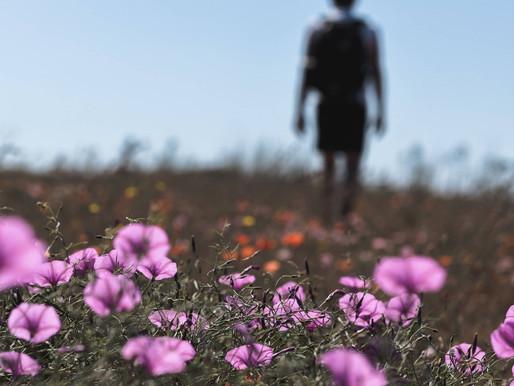 RESOLVING UNWORTHINESS
