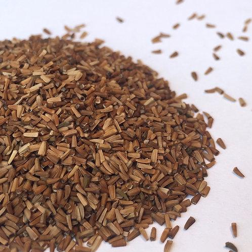 Chamomile, Dyer's  (Anthemis tinctora)