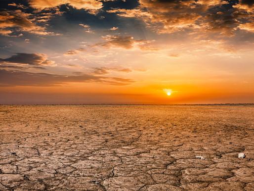 Quanto farà caldo? Nuove previsioni OMM per prossimi 5 anni
