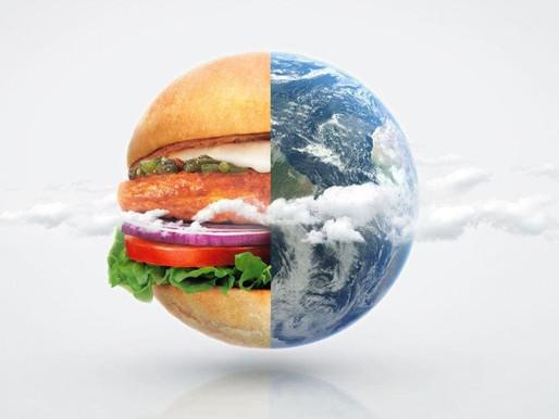 I panini di MAX Burgers, #storiesostenibili