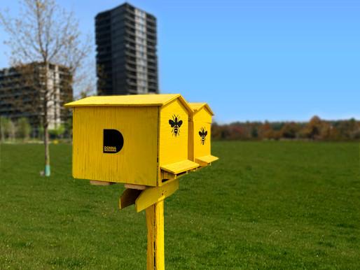 Earth Day, a Milano 1 milione di api per una città più verde