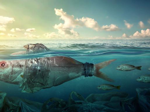 Plastica in mare, l'iniziativa di Marevivo