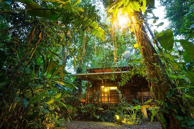 ECO Costa Rica.jpg