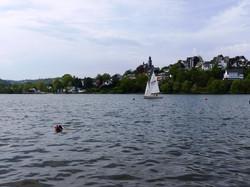 Segler und Landseer im Wasser vereint