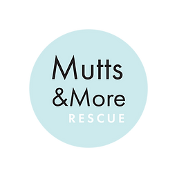 Mutts n' More_test-03.png