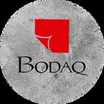 Bodaq-Iconos-Pagina-03.png