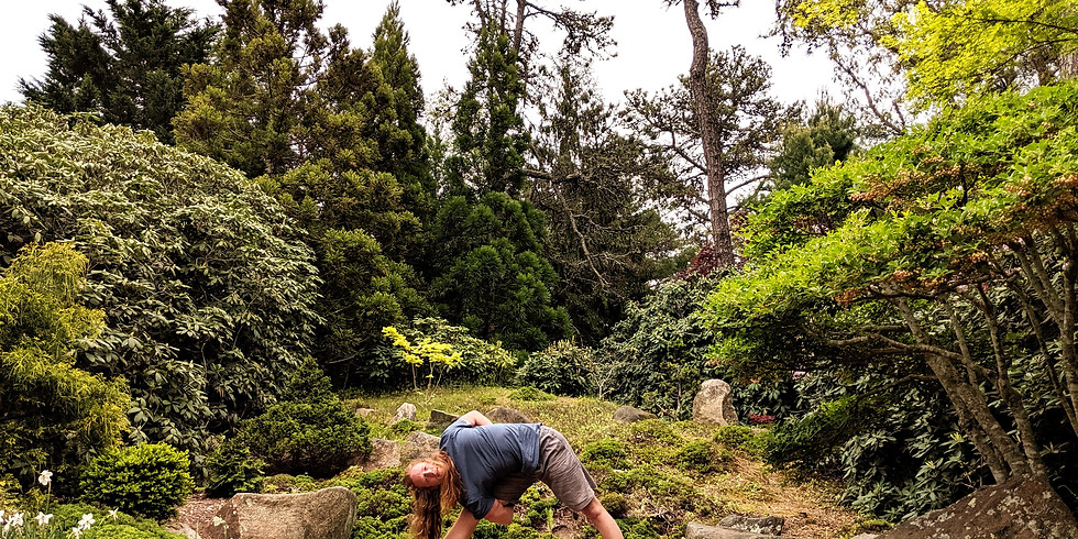 Yoga and Meditation in the Mytoi Gardens
