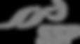 SSP-logo 2.png