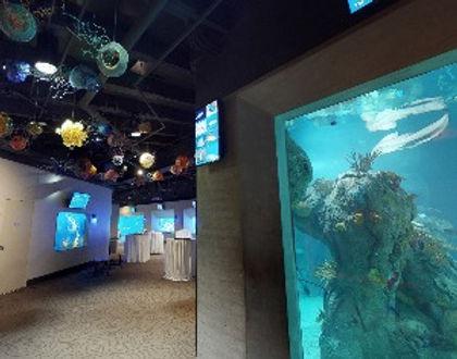 Toledo Zoo & Aquarium